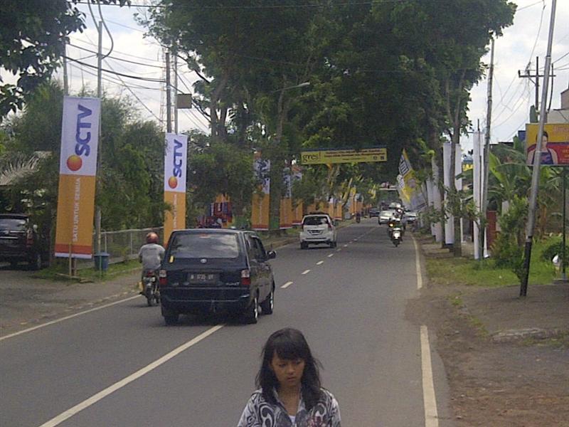 vertical banner SCTV 2013 (6)