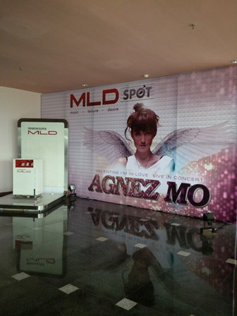 agnes mo live in concert event organizer malang (10)