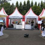 event-allabout-pop-up-di-rampal-malang-7